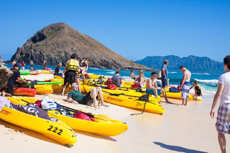 在Mokulua海岛上的游人 免版税库存照片