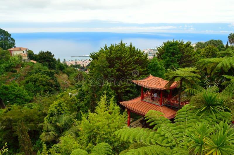 在Monte宫殿热带庭院的日本大厦 库存图片
