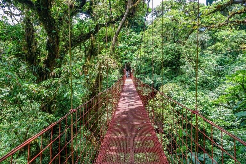 在Monteverde云彩森林,哥斯达黎加的暂停的桥梁 免版税图库摄影