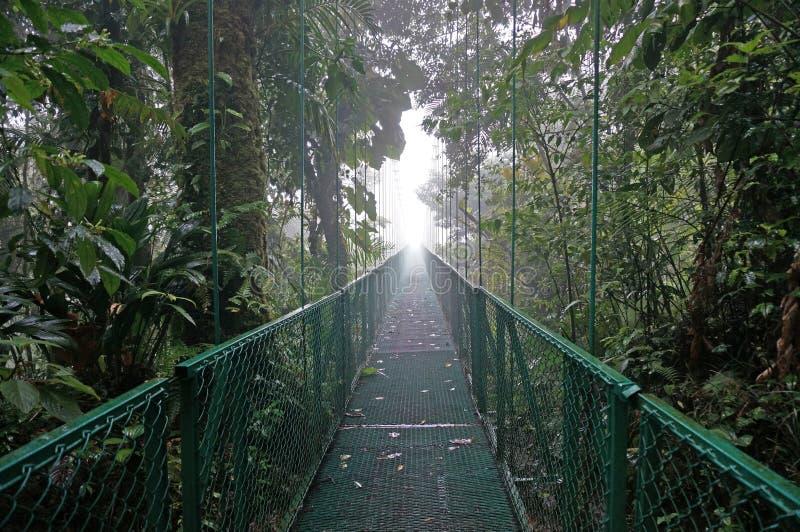 在Monteverde的暂停的桥梁 免版税图库摄影