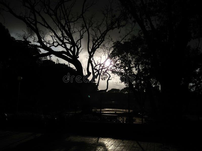 在Morbe水坝新孟买潘韦尔 免版税库存照片