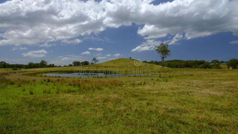 在Morisset,NSW,澳大利亚附近的小山 免版税库存照片