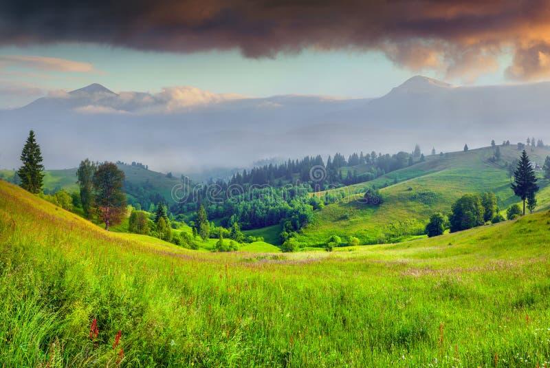 在mountais的有雾的夏天mornnig 图库摄影