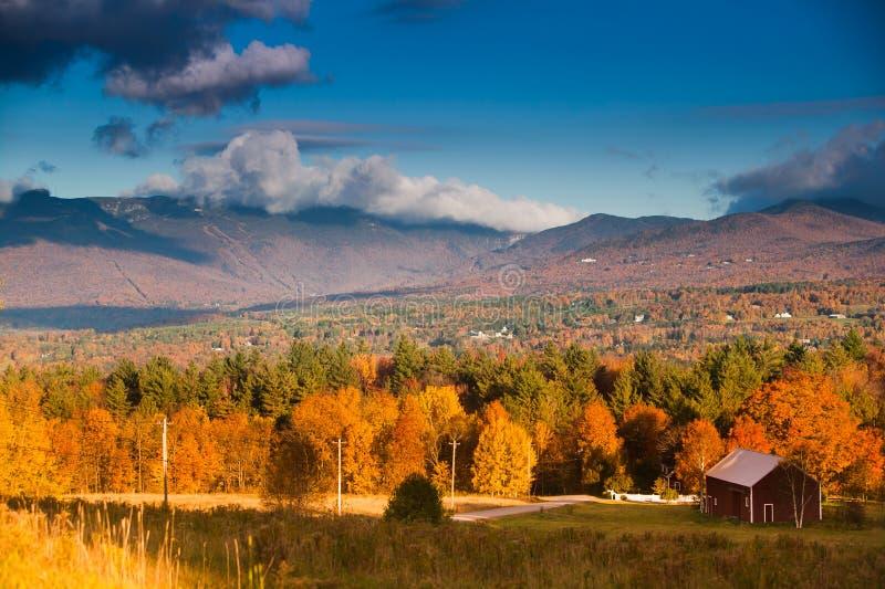 在Mt.曼斯菲尔德的秋叶在Stowe,佛蒙特, U 免版税库存照片