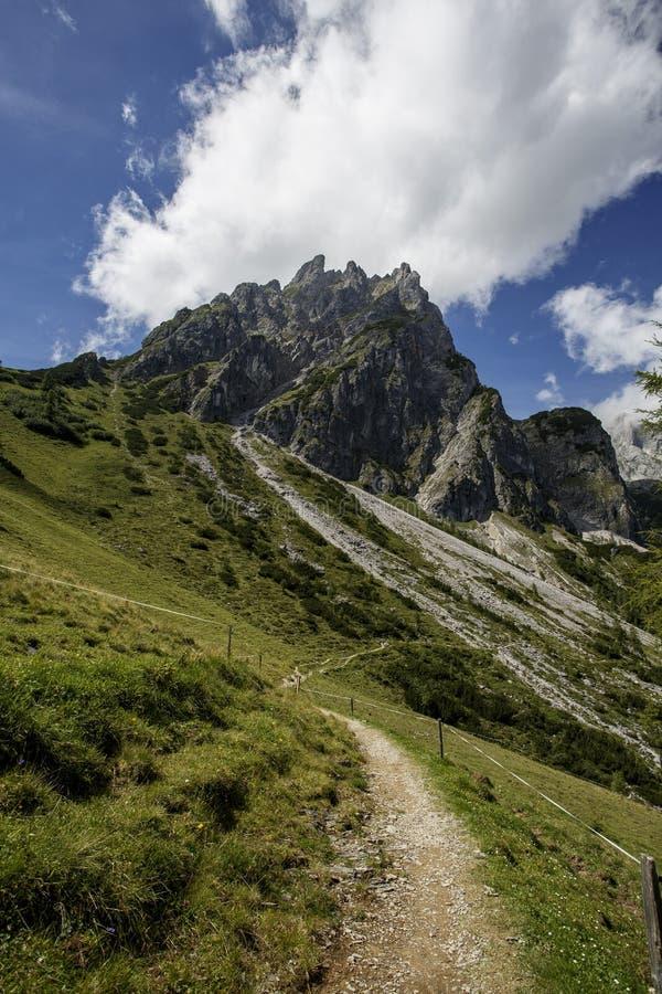 在Muehlbach上午Hochkoenig的高山风景在夏天 库存图片