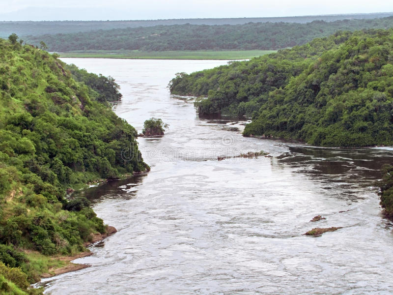 在Murchison Falls附近在乌干达 免版税图库摄影