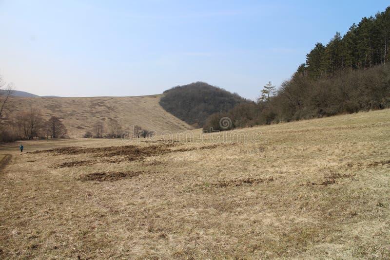 在Myjava附近的高地风景 免版税图库摄影