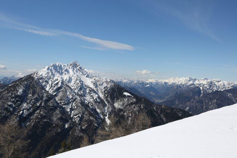 在n的白色雪盖的山的壮观的全景 免版税库存图片