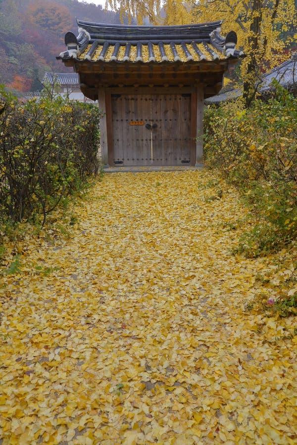 在Namsangol民间村庄,汉城,韩国的秋天颜色- 2013年11月 库存图片