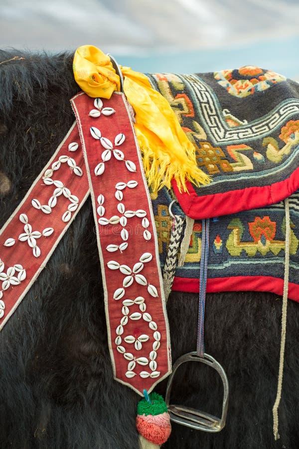 在Namtso湖的牦牛在西藏 库存照片