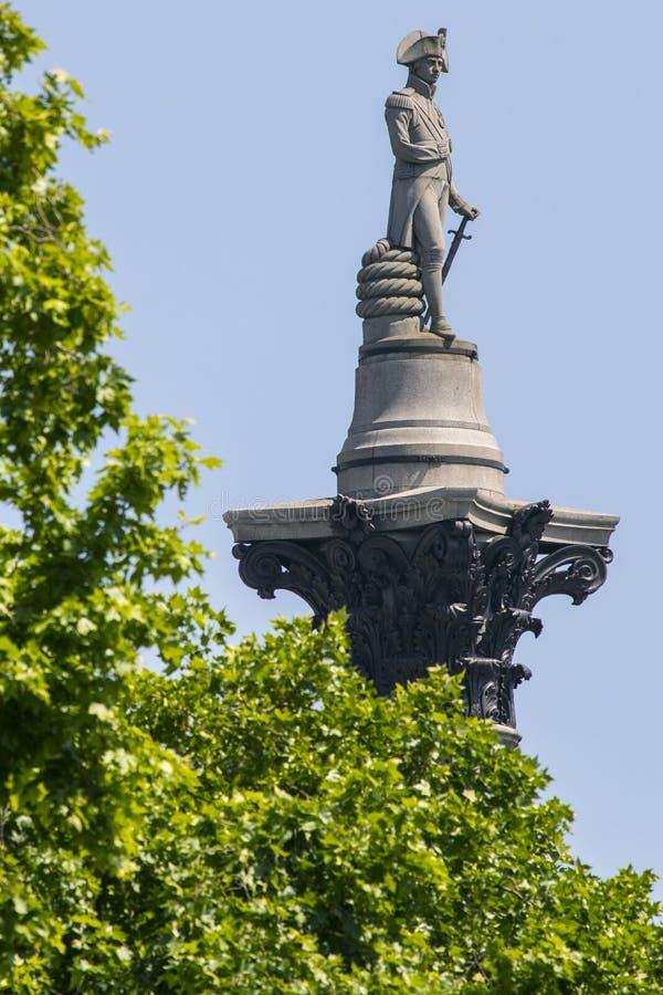 在Nelsons专栏顶部的纳尔逊雕象在伦敦 库存图片