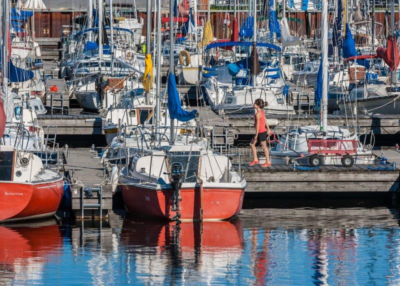 在Nepean航行俱乐部的游艇 免版税图库摄影