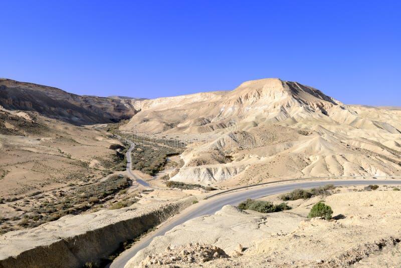 在Neqev沙漠的Ein Avdat峡谷 免版税库存图片