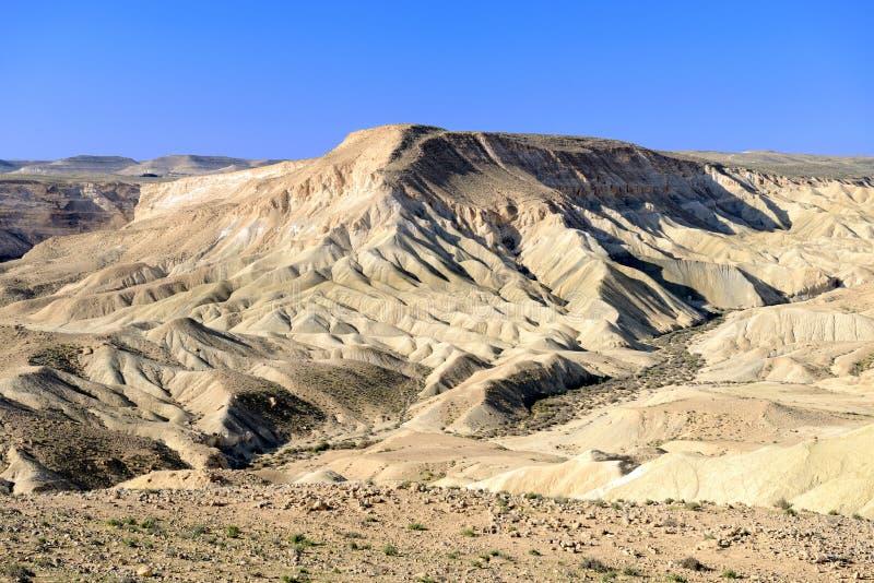在Neqev沙漠的Ein Avdat峡谷 库存照片