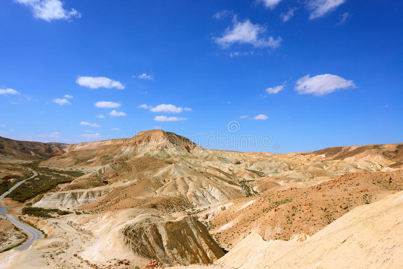 在Neqev沙漠的Ein Avdat峡谷 免版税图库摄影