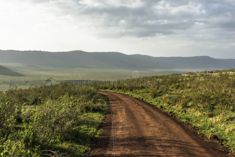 在Ngorongoro火山口的路 免版税库存图片