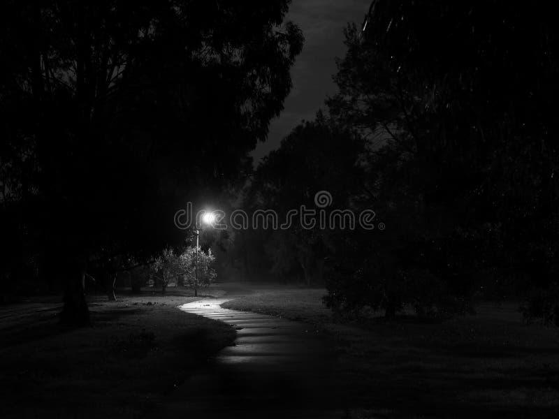 在NightCreepy的黑暗和蠕动的自行车道路 免版税库存图片