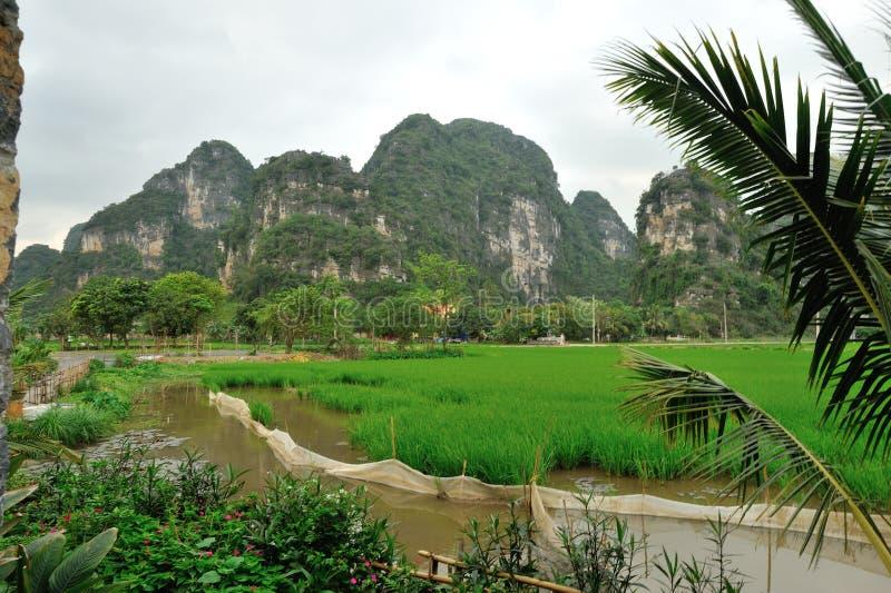 在Ninh Binh附近, Tam Coc 库存照片