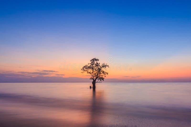 在Nirwana海滩, Padang,西部苏门答腊岛,印度尼西亚的日落 免版税图库摄影