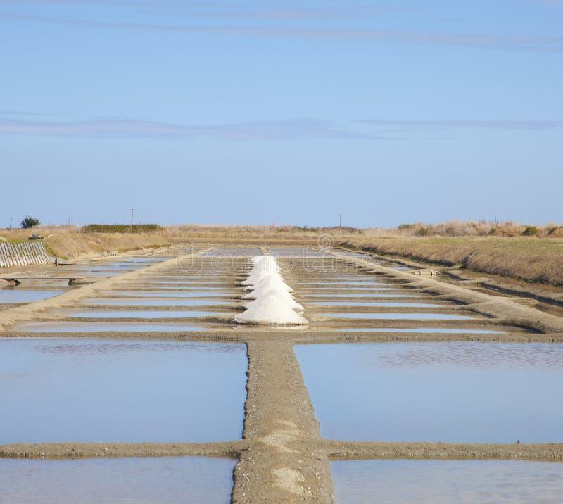在Noirmoutier海岛上的传统盐领域  库存图片