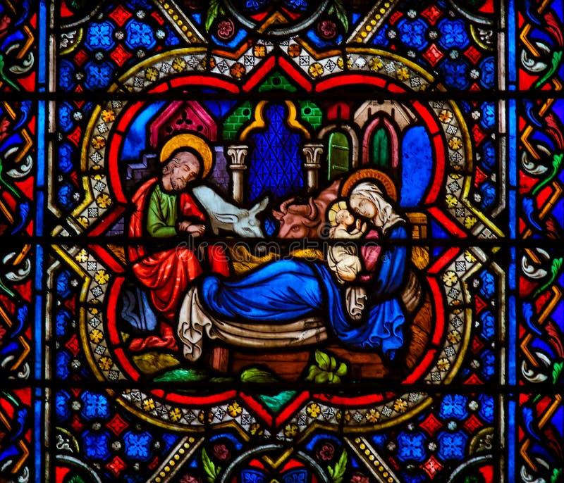 在Notre Dame,Parisof的彩色玻璃在圣诞节的诞生场面 免版税库存照片