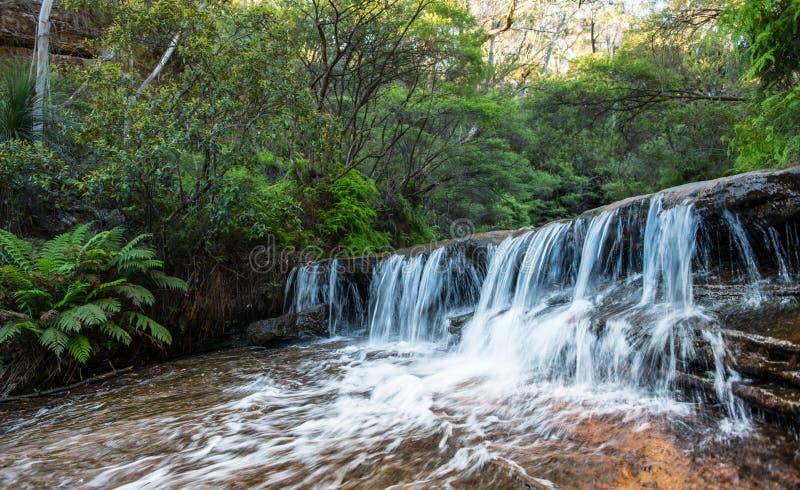 在NSW/AUSTRALIA的瀑布 免版税库存图片