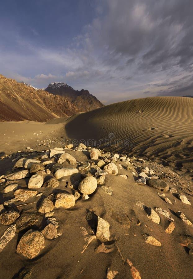 在Nubra谷-拉达克-查谟和克什米尔的沙丘 免版税库存照片