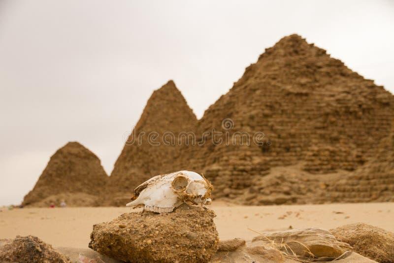 在Nuri的金字塔 免版税库存图片