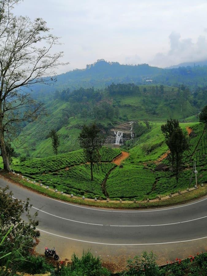 在nywara eliya,斯里兰卡的美好的风景场面 库存图片