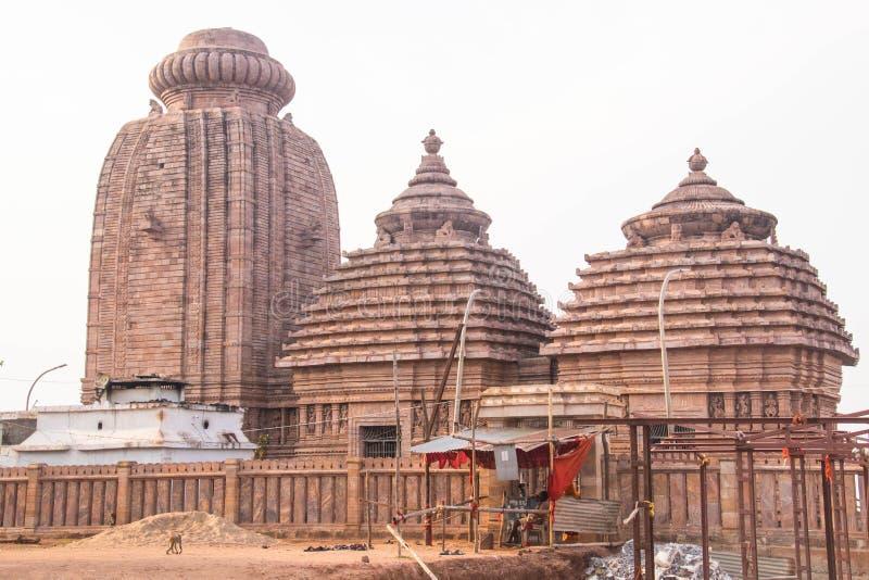在odisha印度的印度寺庙 免版税库存图片