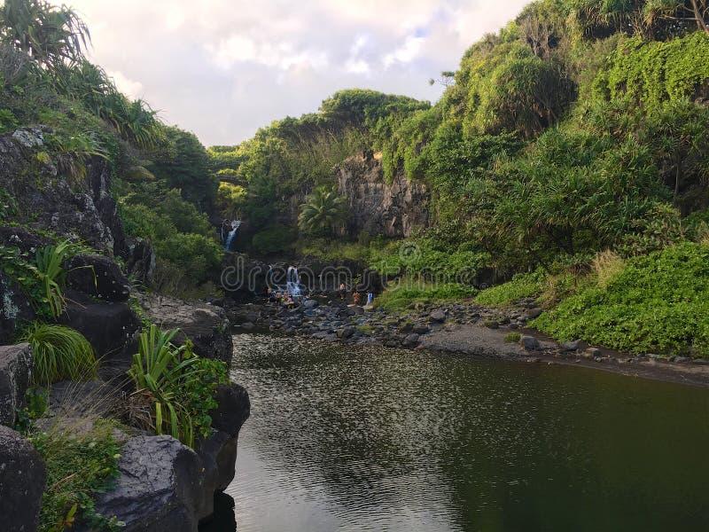 在Oheo的七个神圣的水池 库存图片