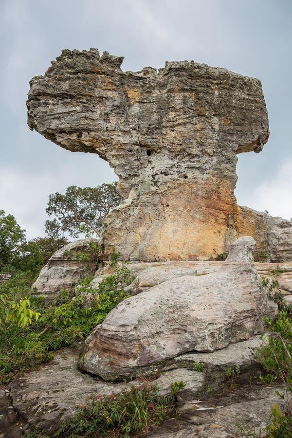 在Pa Hin Ngam国立公园-猜也奔府,泰国的奇怪的形状的岩石 库存照片