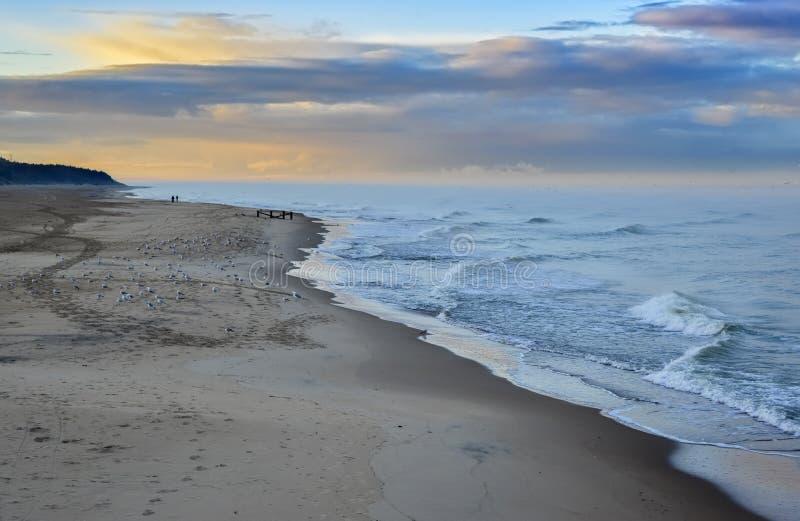 在Palanga,立陶宛,欧洲附近的波儿地克的海滩 库存照片