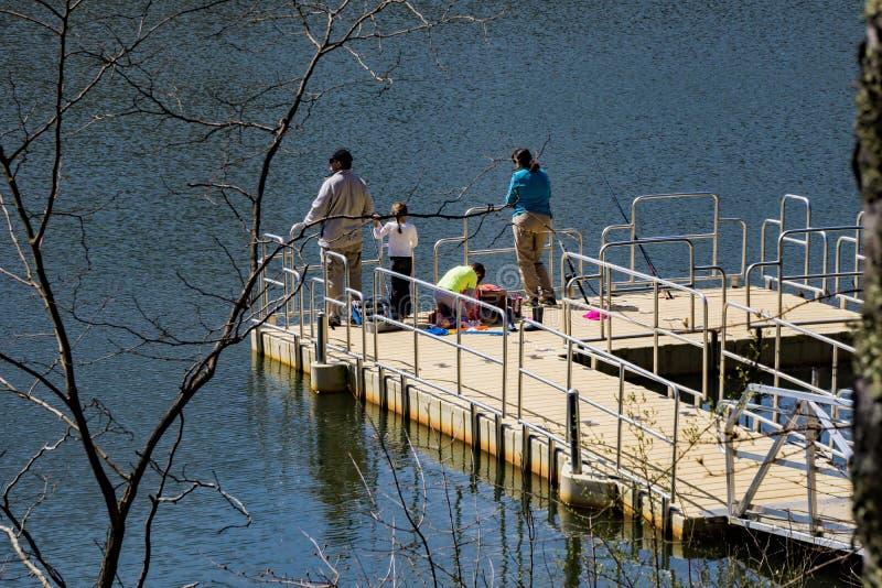 在Pandapas池塘的家庭渔 库存图片