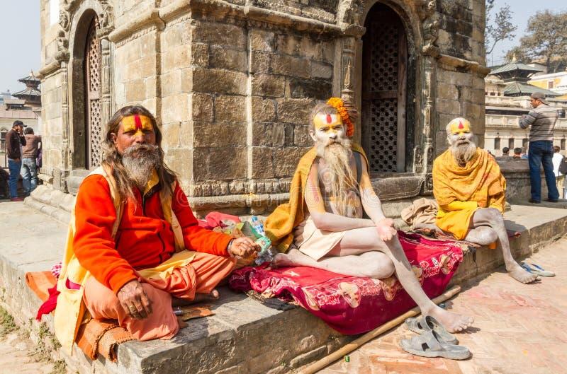 在Pashupatinath寺庙的Sadhus 库存照片
