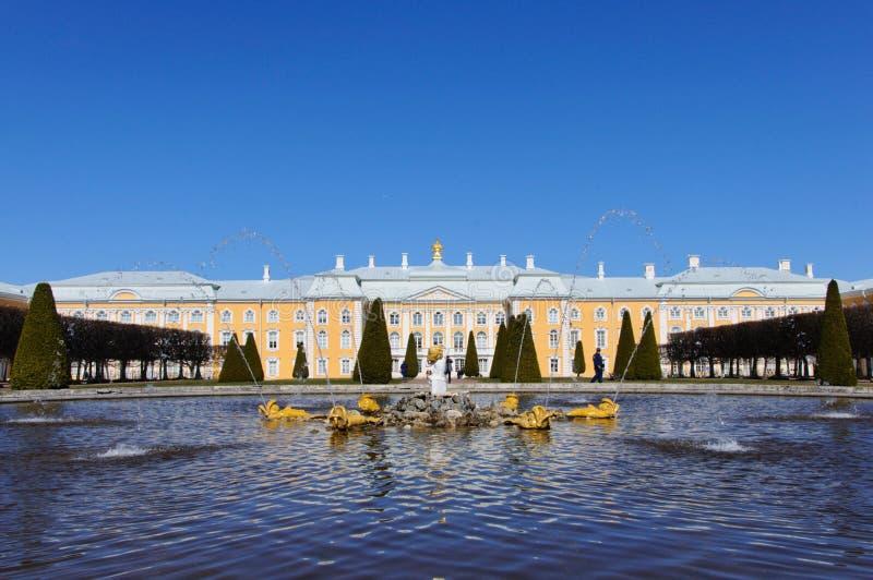 在Peterhof宫殿前面的喷泉在俄罗斯 图库摄影