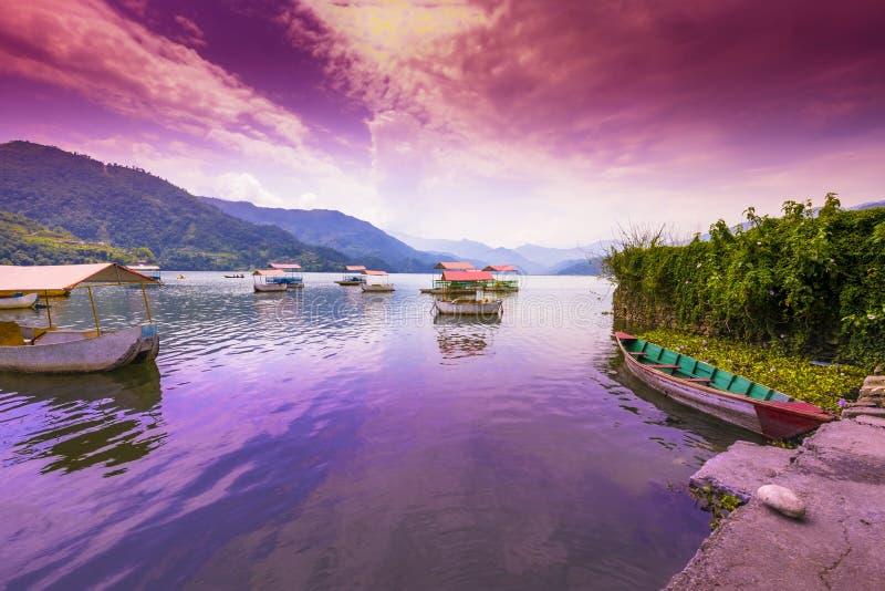 在Phewa湖、蓝色小山和日落云彩停放的五颜六色的脚蹬小船在背景 1 库存图片