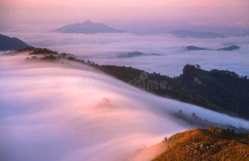 在Phu池氏Fa的薄雾早晨清莱泰国 免版税图库摄影