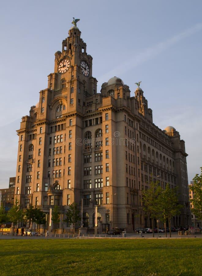 在Pierhead的皇家肝脏大厦在利物浦,英国 库存图片