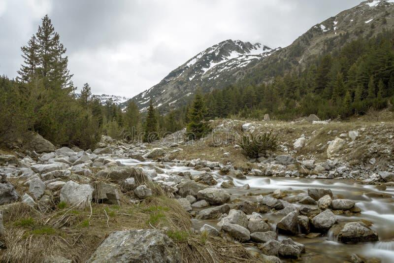 在Pirin山,保加利亚 库存照片