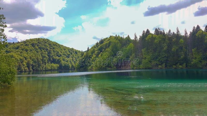 在Plitvice湖的纯净的自然 库存照片
