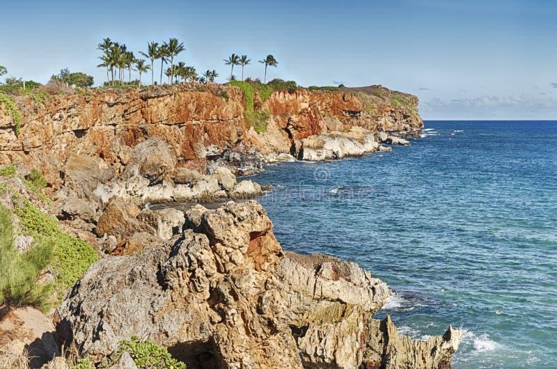 在Poipu海滩的点 免版税库存照片