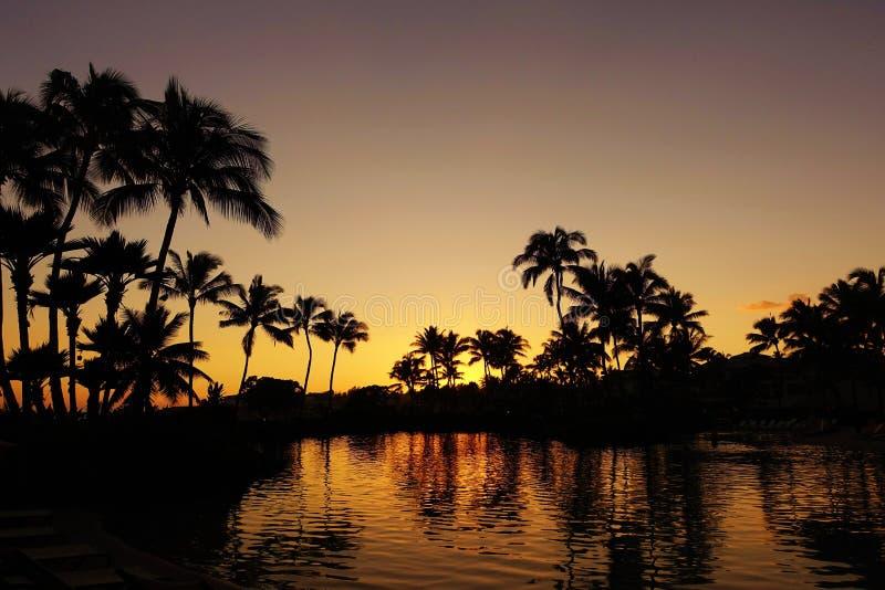 在Poipu海滩的美妙的假期,考艾岛,夏威夷 库存图片