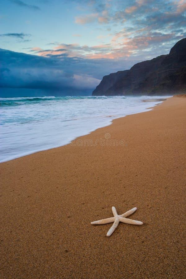 在Polihale的海星靠岸在日落,考艾岛 库存图片