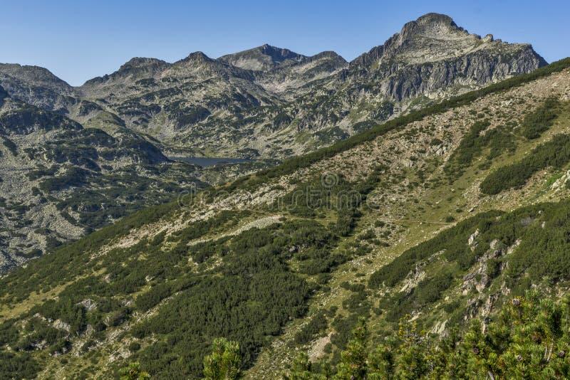 在Popovo湖, Pirin山,保加利亚附近的全景 库存图片