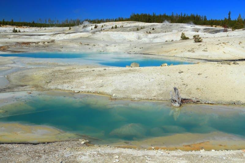 在Porcellain盆地的胶质水池在葛若弗斯喷泉水池,黄石国家公园,怀俄明 免版税库存照片