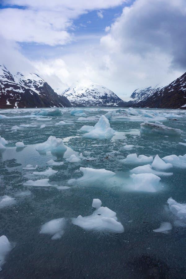 在Portage湖的熔化的冰在阿拉斯加 免版税图库摄影