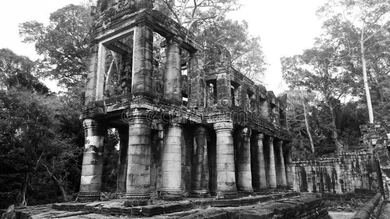 在Preah可汗的异常的寺庙 免版税库存照片