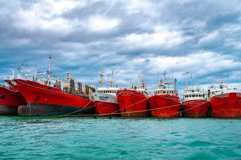 在Puerto Deseado,阿根廷港停泊的许多红色船  库存照片