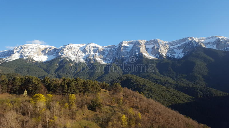 在pyrinees山的自然 免版税库存图片